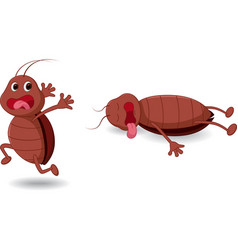 cockroach cartoon expression vector image