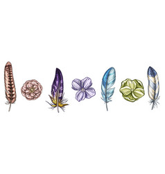 Colorful detailed bird feathers and flowers vector