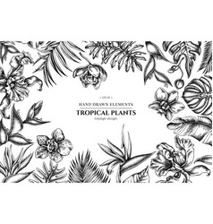 floral design with black and white monstera vector image