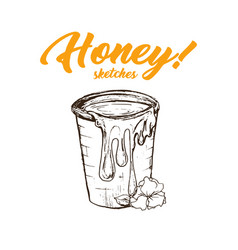 honey sketches bucket honey hand drawn superfood vector image