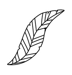 Leaf nature symbol cartoon in black and white vector