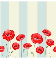 pattern poppy flowers vector image