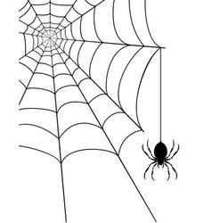 Spidr web 04 vector
