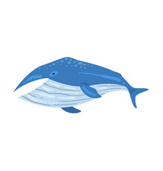 Whale mammal animal marine life element sea or vector
