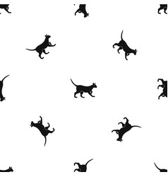 cat pattern seamless black vector image vector image