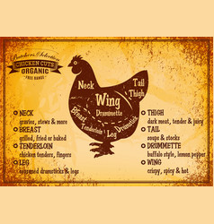 color poster with detailed diagram cutting chicken vector image vector image