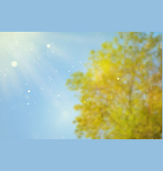blurred background with tree and sky vector image