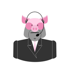 farm call center pig with headset swine operator vector image
