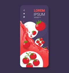 fresh tomato juice liquid splash realistic vector image