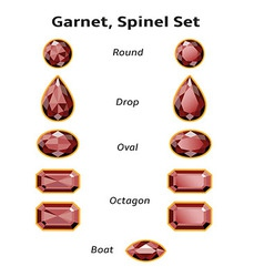 Garnet Spinel Set With Text vector image