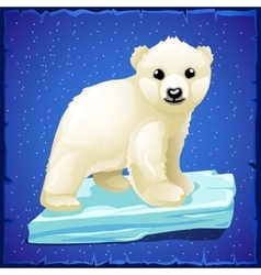 Little polar bear on an ice floe vector