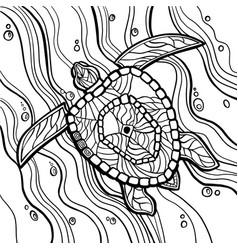 Sea turtle coloring book vector