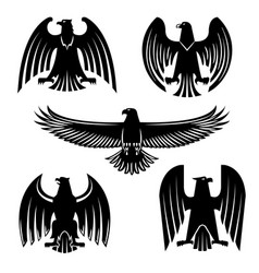 black eagle hawk or falcon heraldic symbol set vector image