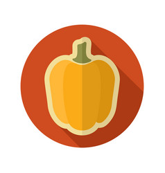 pepper flat icon vegetable vector image vector image