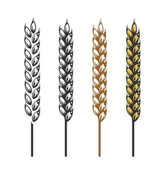 Wheat barley rye bread craft bakery icon vector image