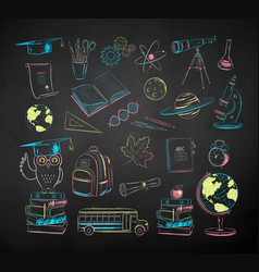 collection education and science items vector image