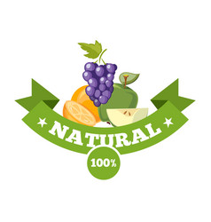 natural fresh food fruits logo badge vector image