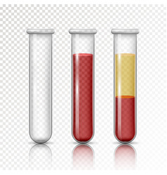 plasma and layers red blood cells vector image