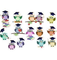 set graduation owl back to school graduation vector image