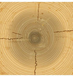 wood cross section background vector image