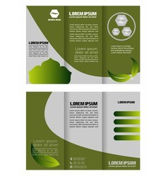 Brochure folder leaflet bio eco green leaf nature vector image