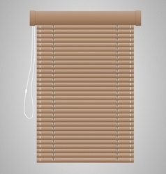 Brown Jalousie vector image