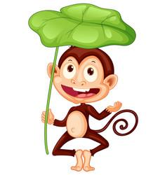 cute monkey holding big leaf on white background vector image
