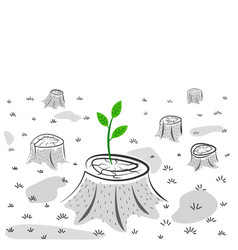 green sprout on stump - new life concept vector image