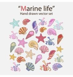 marine seaweedshells vector image