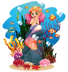 mermaid and fish underwater vector image
