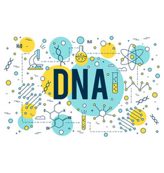 science bdna background research outline icon vector image