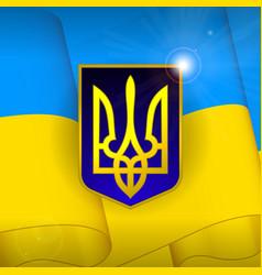 ukraine flag background vector image