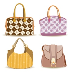 woman handbag vector image