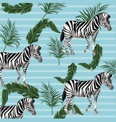 zebra and leaves background vector image