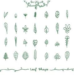 Doodle Leaf Shape Outline vector image vector image