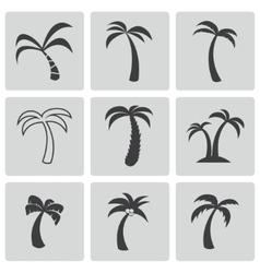 black palm icons set vector image