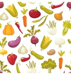 Ecological farming production classical vegetables vector image vector image