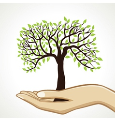 small tree on hand vector image vector image