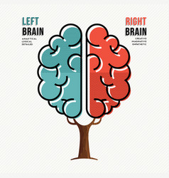 Human brain concept for right and left hemisphere vector