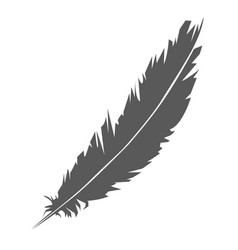 simple icon of feather silhouette vector image