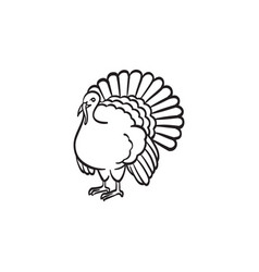 turkey hand drawn sketch icon vector image