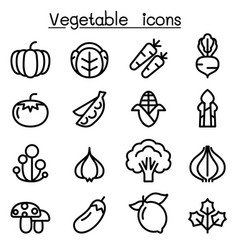 vegetable icon set in thin line style vector image