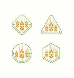 wheat logo farm template vector image