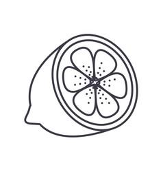 lemon line icon sign on vector image
