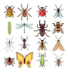 Insect flat icons isolated on white vector image vector image