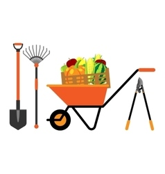 Fruits and vegetables in wheelbarrow vector image