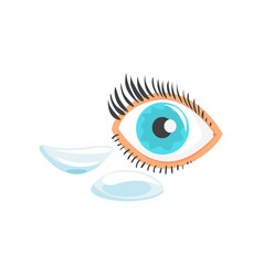 Human eye and two contact lenses cartoon vector