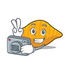 Photgrapher conchiglie pasta mascot cartoon vector