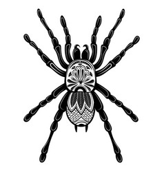 spider with patterns zentangle spider black vector image