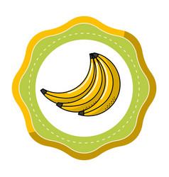 Sticker babanas fruit icon stock vector